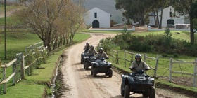 Quad Bikes - Live Bookings