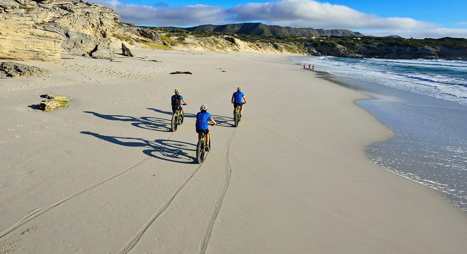 Fatbike Beach Tour